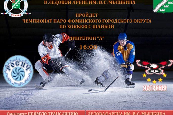 Чемпионат по хоккею с шайбой 26 января в 16:00