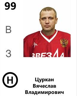 Цуркан Вячеслав Владимирович