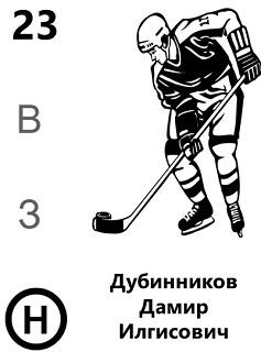 Дубинников Дамир Илгисович