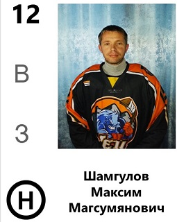 Шамгулов Максим Магсумянович