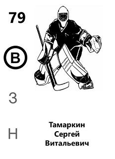 Тамаркин Сергей Витальевич