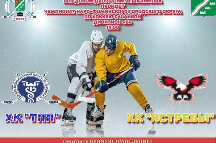22 ноября в 15:00 пройдет чемпионат по хоккею среди любительских Команд Наро-Фоминского городского округа по хоккею с шайбой